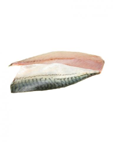 Makreel (filet)